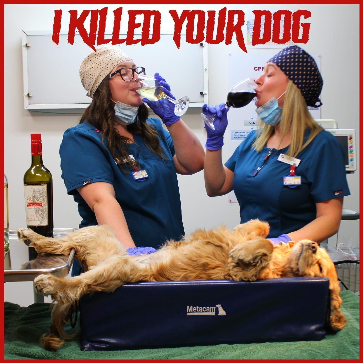 Promo shot from comedy podcast 'I Killed Your Dog'